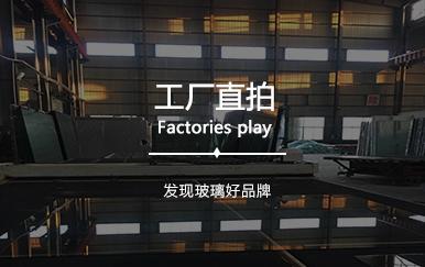 分类工厂直拍.jpg